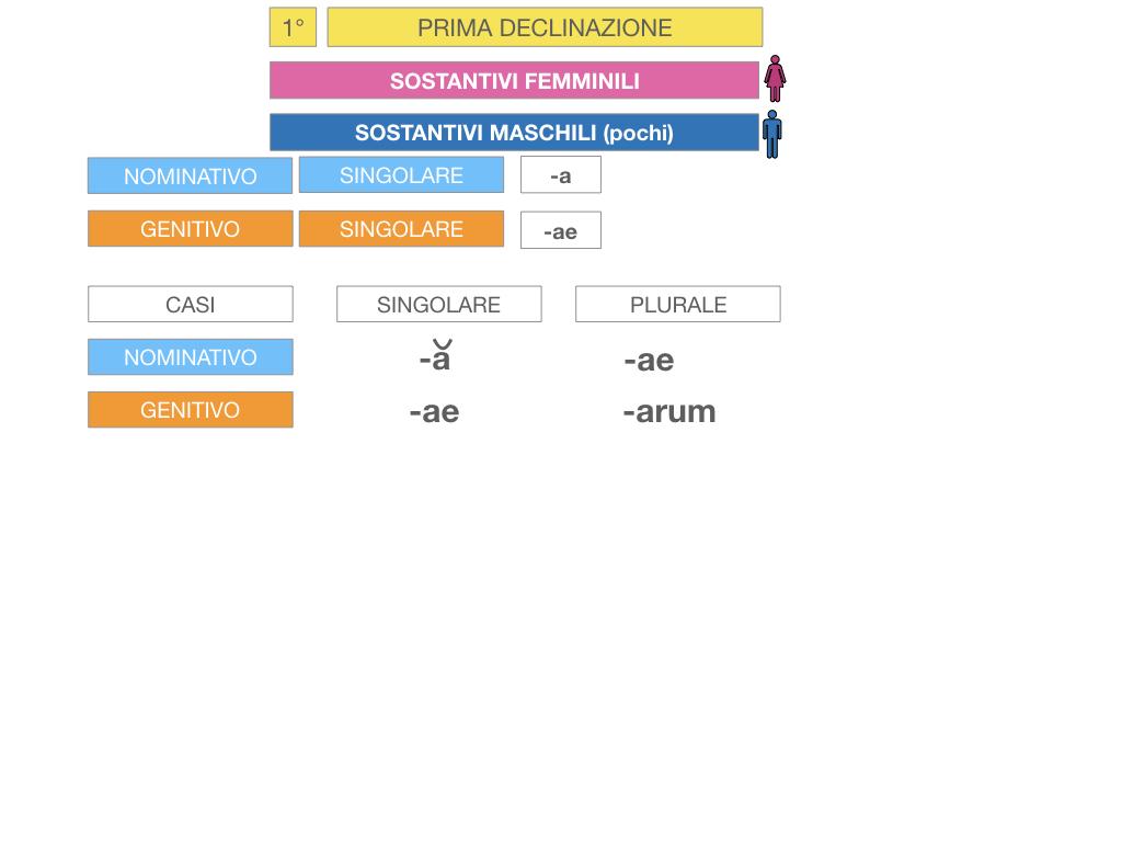 4. PRIMA DECLINAZIONE_SIMULAZIONE.043
