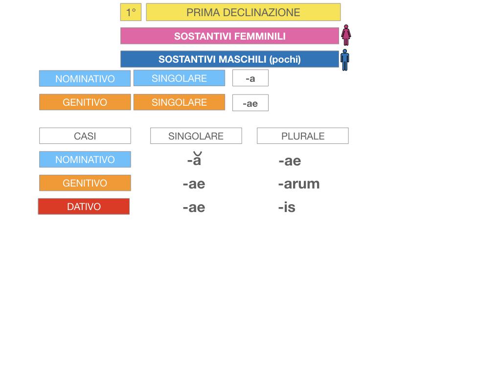 4. PRIMA DECLINAZIONE_SIMULAZIONE.046
