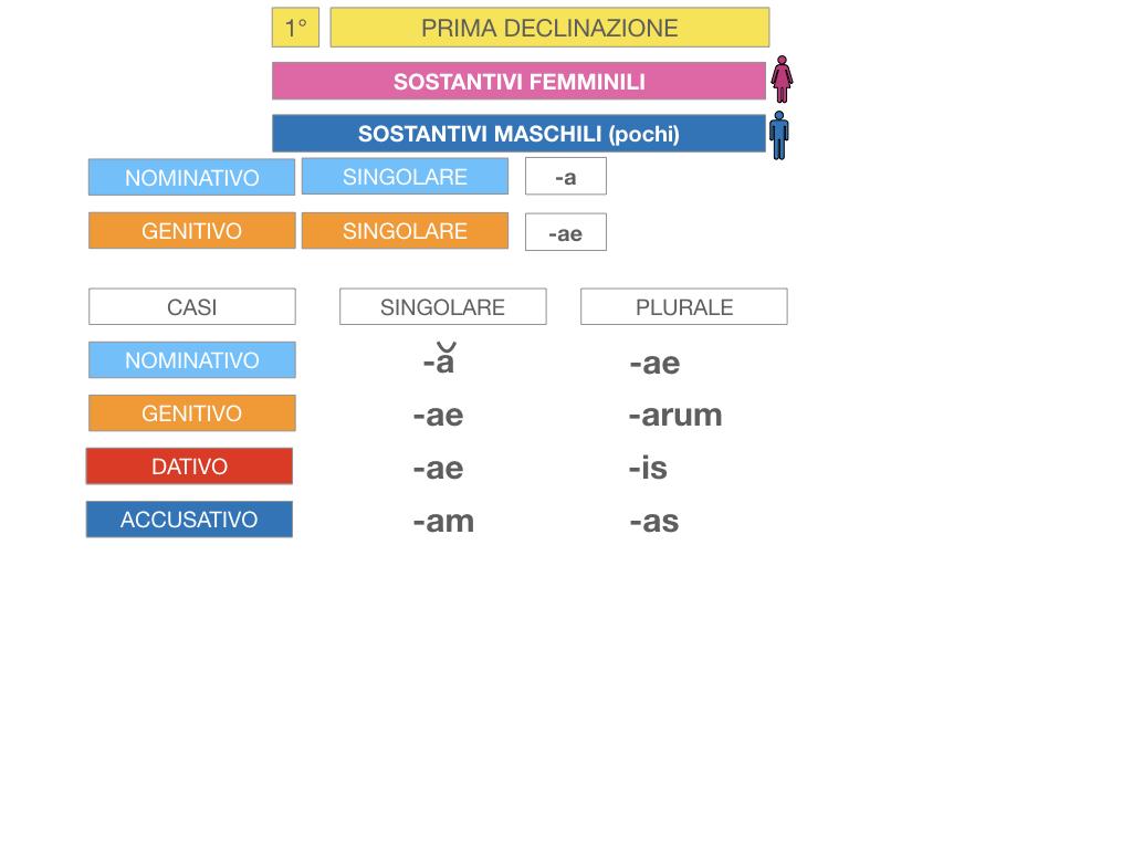 4. PRIMA DECLINAZIONE_SIMULAZIONE.048