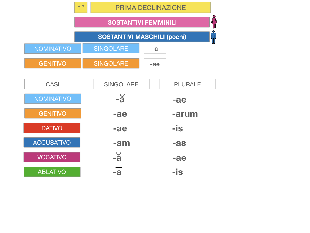 4. PRIMA DECLINAZIONE_SIMULAZIONE.053