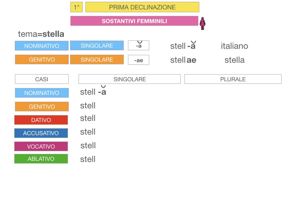 4. PRIMA DECLINAZIONE_SIMULAZIONE.074