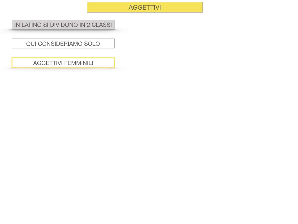 5. AGGETTIVO FEMMINILE PRIMA CLASSE_SIMULAZIONE.005