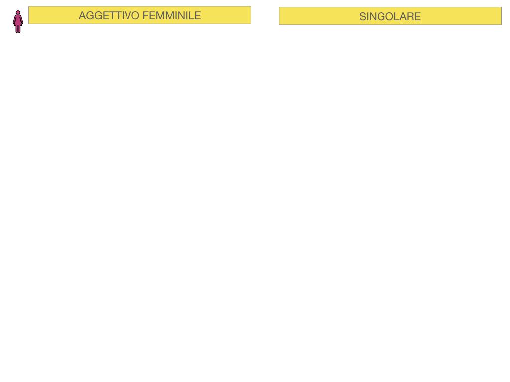 5. AGGETTIVO FEMMINILE PRIMA CLASSE_SIMULAZIONE.013