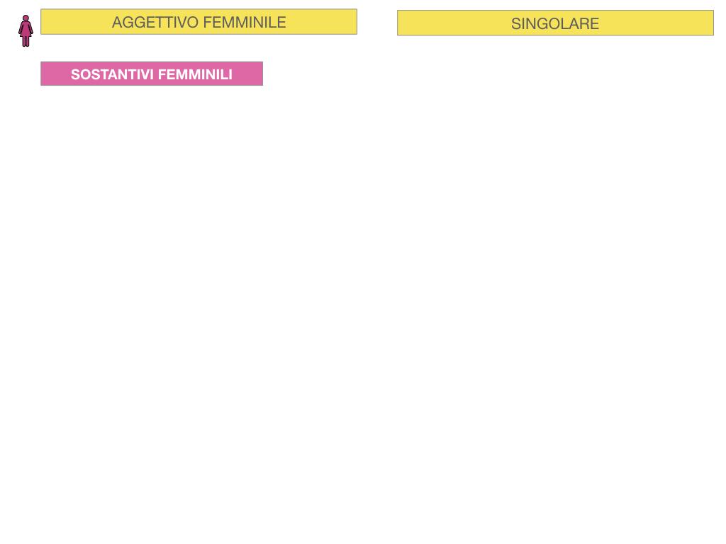 5. AGGETTIVO FEMMINILE PRIMA CLASSE_SIMULAZIONE.014