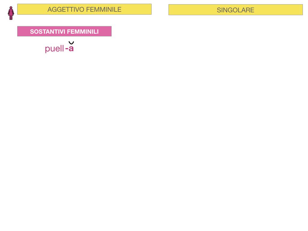 5. AGGETTIVO FEMMINILE PRIMA CLASSE_SIMULAZIONE.015
