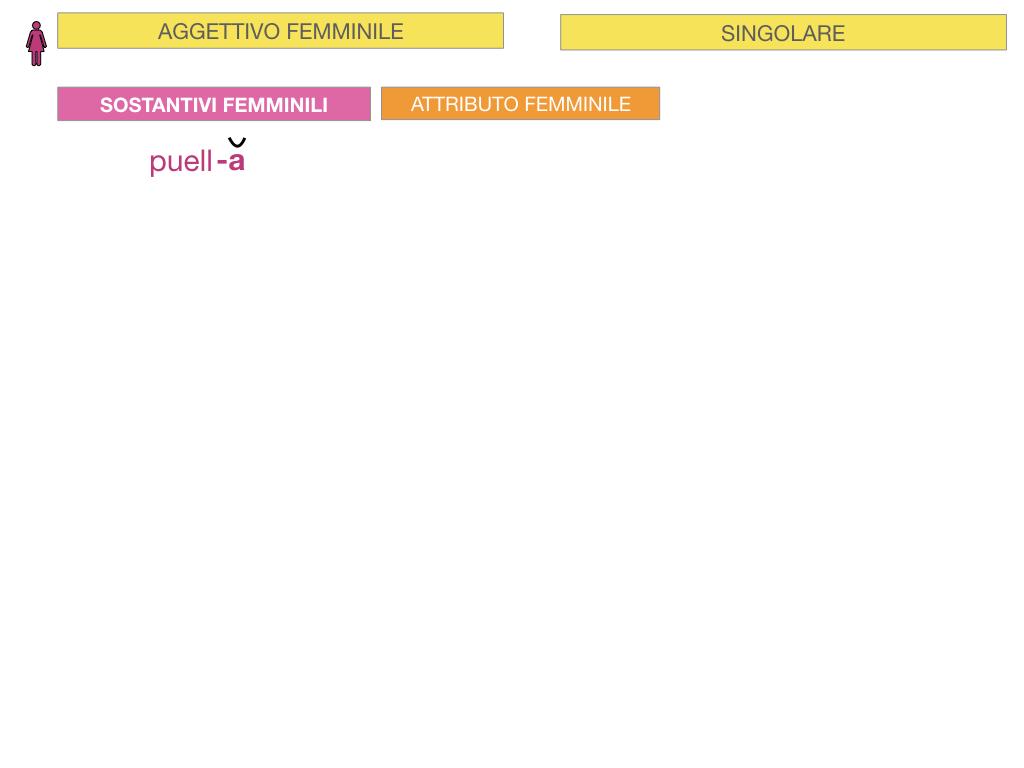 5. AGGETTIVO FEMMINILE PRIMA CLASSE_SIMULAZIONE.016