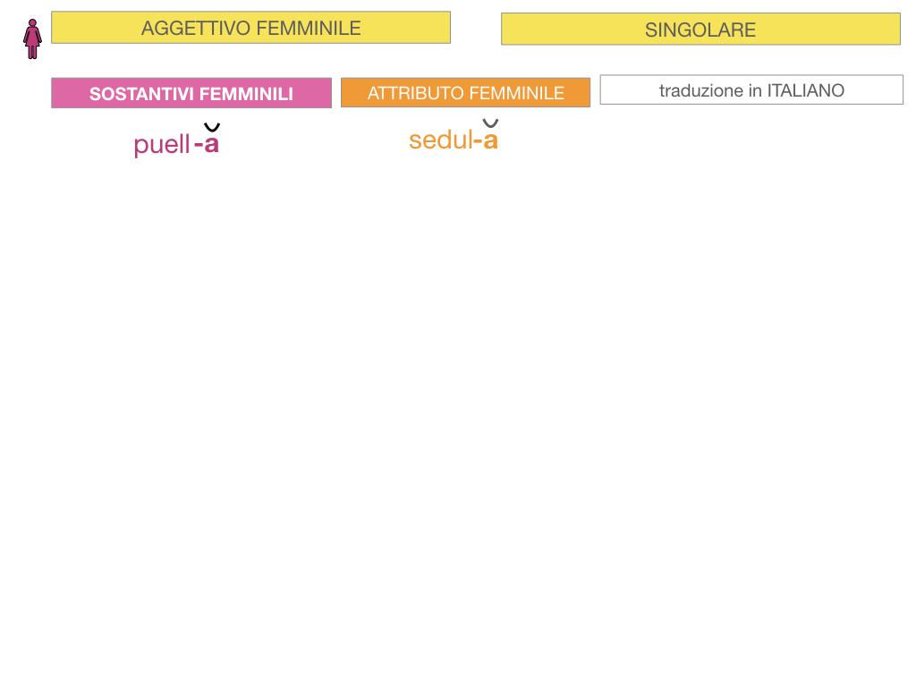 5. AGGETTIVO FEMMINILE PRIMA CLASSE_SIMULAZIONE.018