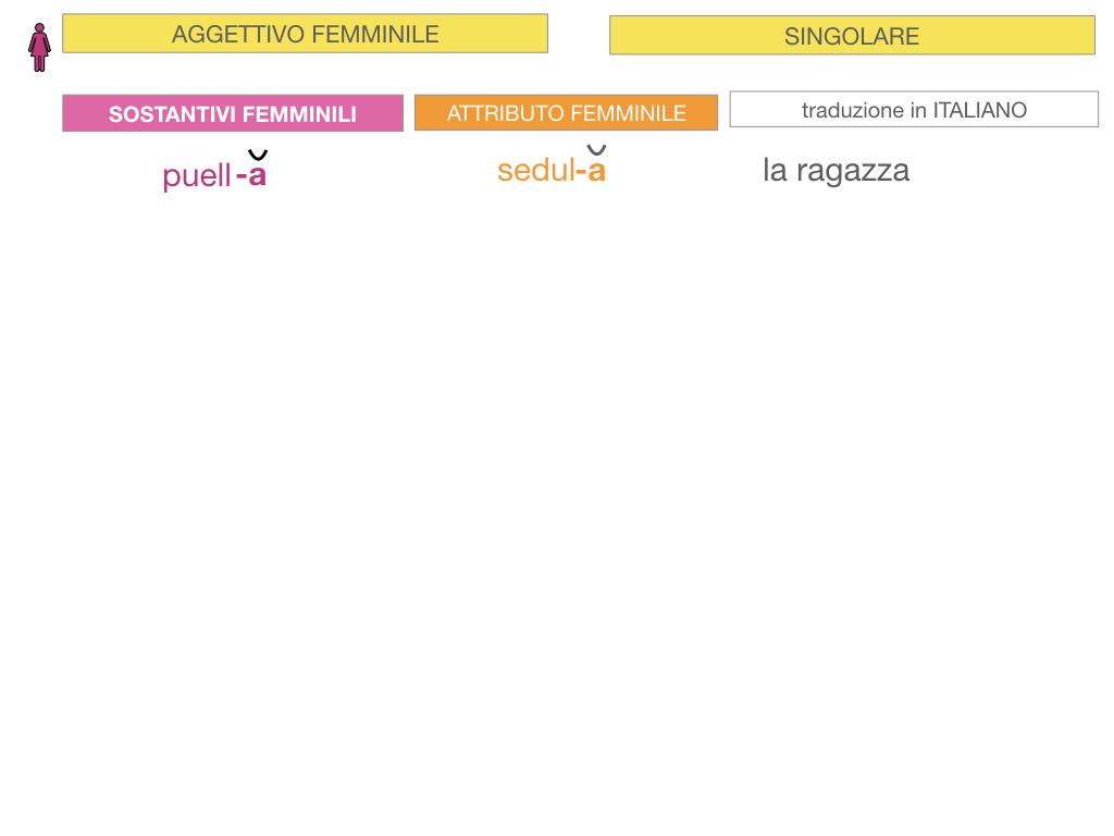5. AGGETTIVO FEMMINILE PRIMA CLASSE_SIMULAZIONE.019