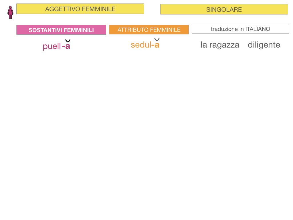 5. AGGETTIVO FEMMINILE PRIMA CLASSE_SIMULAZIONE.020