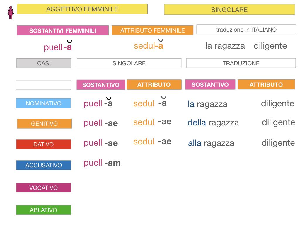 5. AGGETTIVO FEMMINILE PRIMA CLASSE_SIMULAZIONE.041