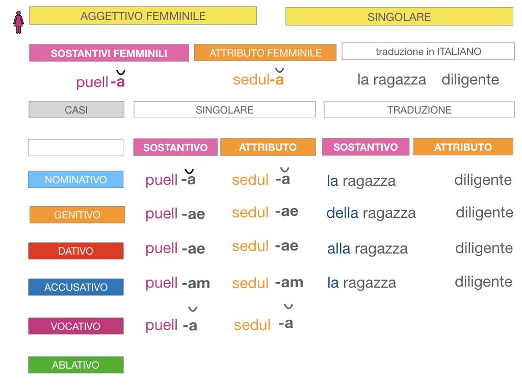 5. AGGETTIVO FEMMINILE PRIMA CLASSE_SIMULAZIONE.046