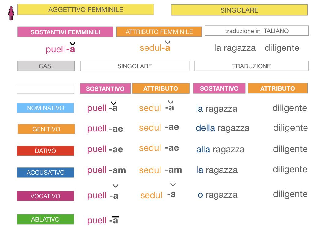 5. AGGETTIVO FEMMINILE PRIMA CLASSE_SIMULAZIONE.049