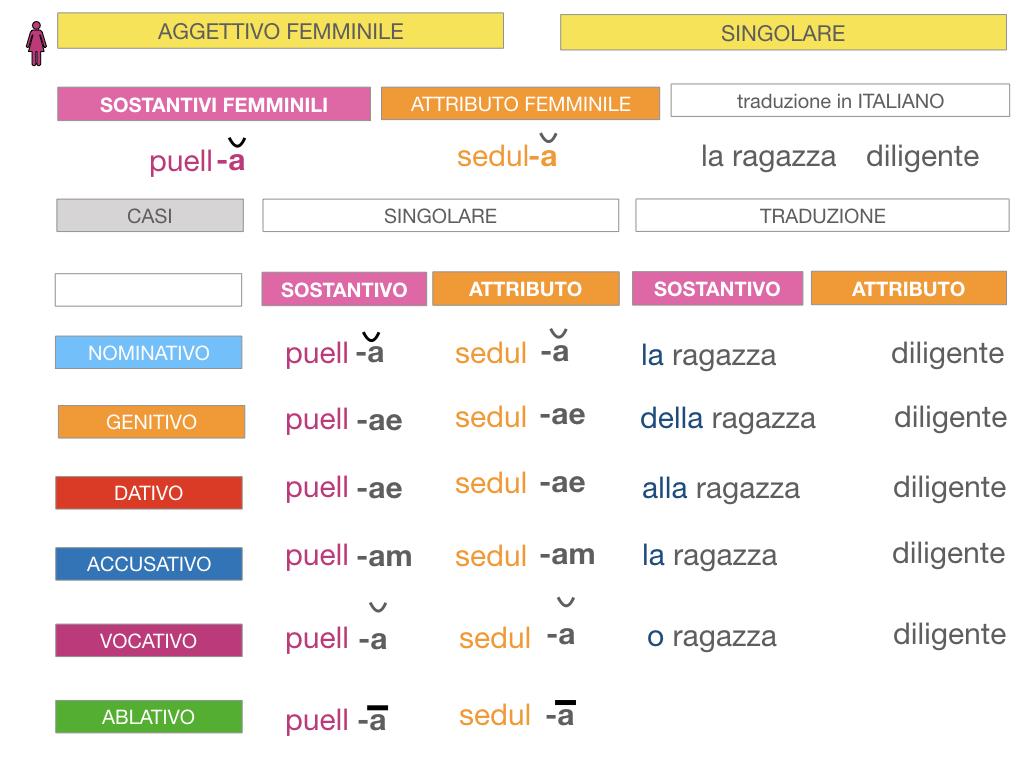 5. AGGETTIVO FEMMINILE PRIMA CLASSE_SIMULAZIONE.050