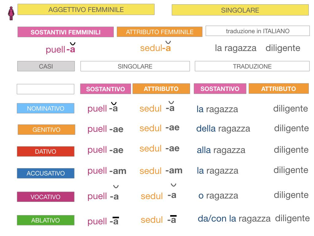 5. AGGETTIVO FEMMINILE PRIMA CLASSE_SIMULAZIONE.051