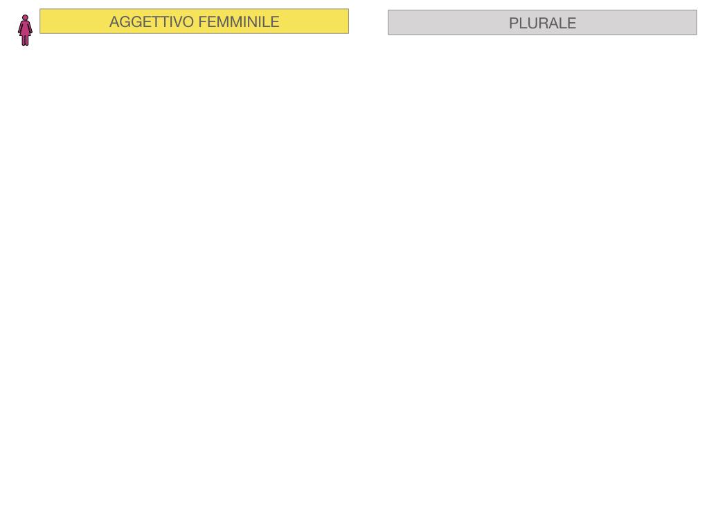 5. AGGETTIVO FEMMINILE PRIMA CLASSE_SIMULAZIONE.052