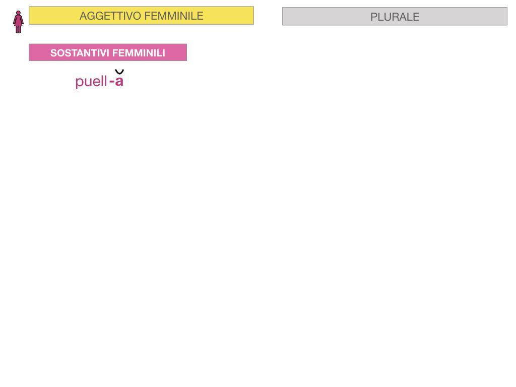 5. AGGETTIVO FEMMINILE PRIMA CLASSE_SIMULAZIONE.053