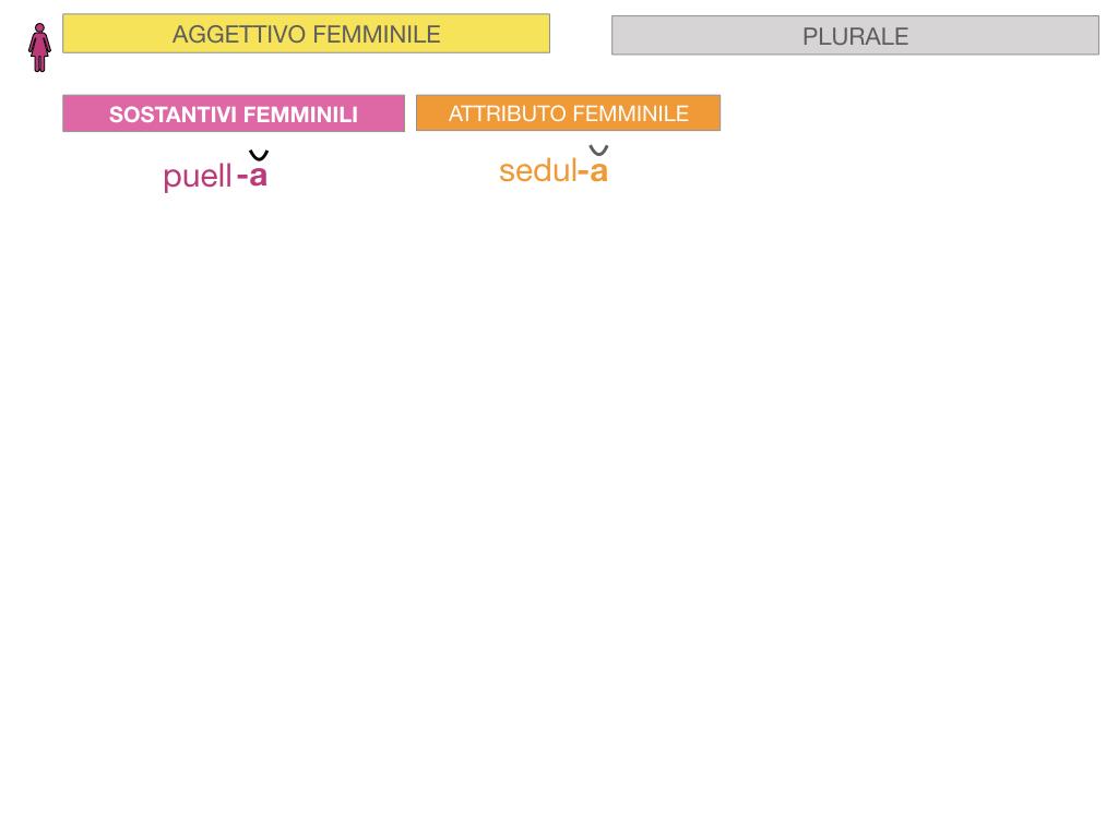 5. AGGETTIVO FEMMINILE PRIMA CLASSE_SIMULAZIONE.054