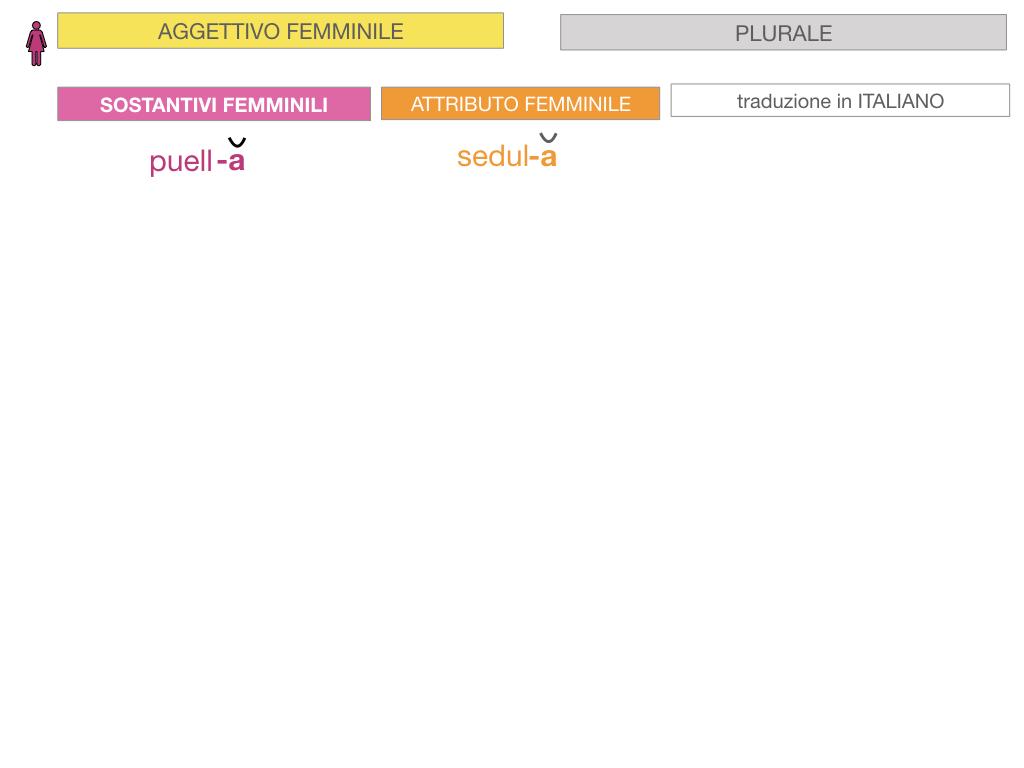 5. AGGETTIVO FEMMINILE PRIMA CLASSE_SIMULAZIONE.055
