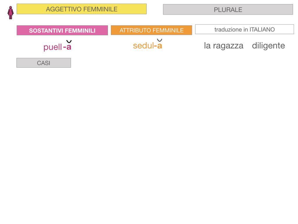 5. AGGETTIVO FEMMINILE PRIMA CLASSE_SIMULAZIONE.058