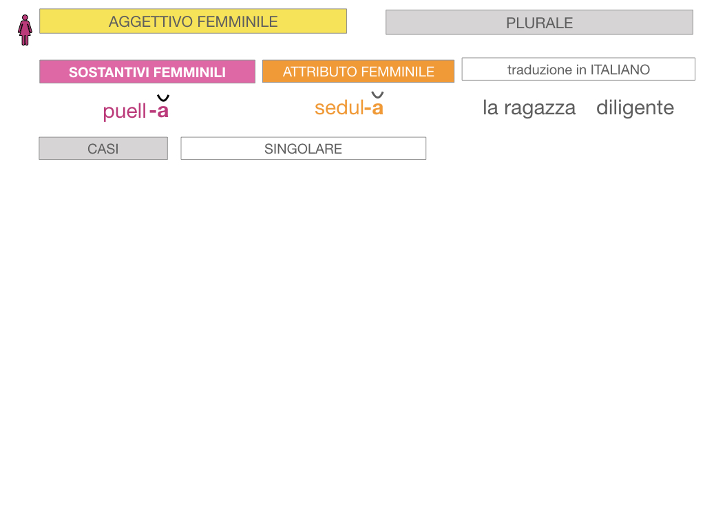 5. AGGETTIVO FEMMINILE PRIMA CLASSE_SIMULAZIONE.059