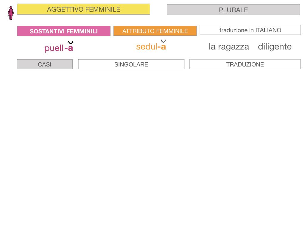 5. AGGETTIVO FEMMINILE PRIMA CLASSE_SIMULAZIONE.060