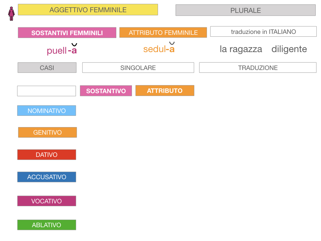 5. AGGETTIVO FEMMINILE PRIMA CLASSE_SIMULAZIONE.062
