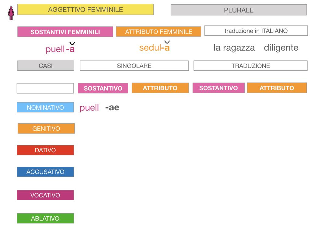 5. AGGETTIVO FEMMINILE PRIMA CLASSE_SIMULAZIONE.064