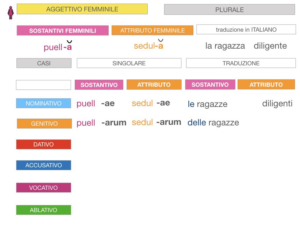 5. AGGETTIVO FEMMINILE PRIMA CLASSE_SIMULAZIONE.070