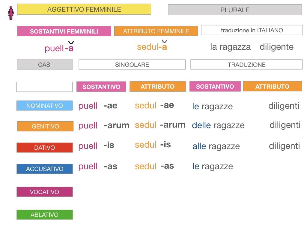 5. AGGETTIVO FEMMINILE PRIMA CLASSE_SIMULAZIONE.078