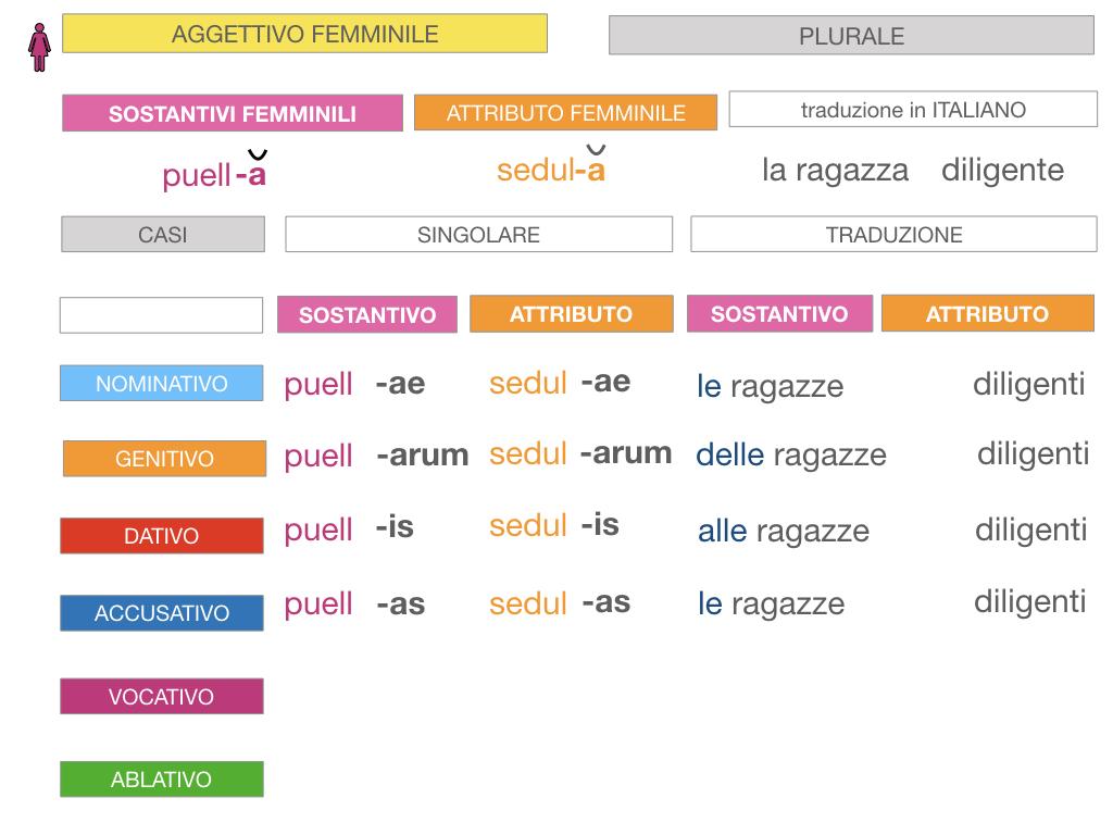5. AGGETTIVO FEMMINILE PRIMA CLASSE_SIMULAZIONE.079