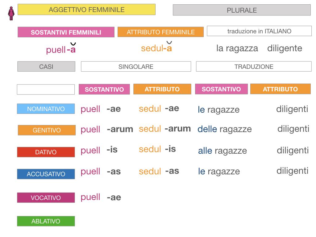 5. AGGETTIVO FEMMINILE PRIMA CLASSE_SIMULAZIONE.080