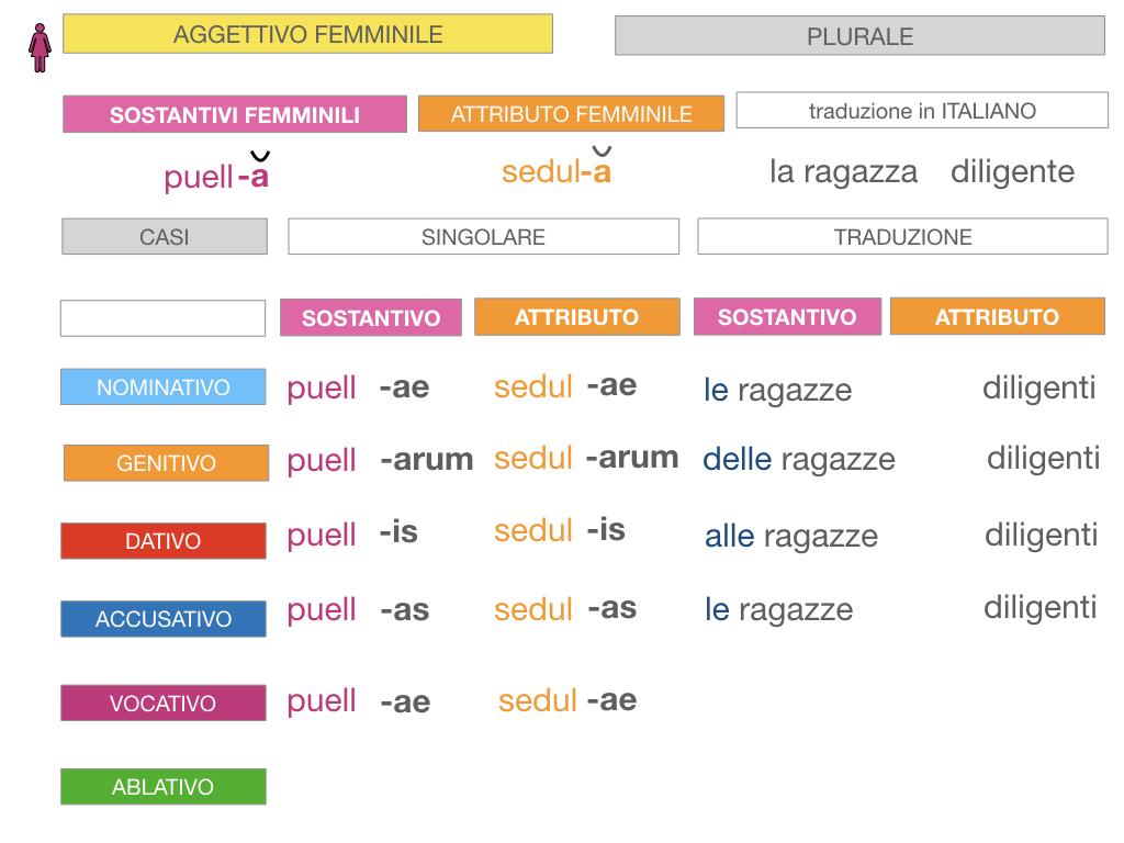 5. AGGETTIVO FEMMINILE PRIMA CLASSE_SIMULAZIONE.081