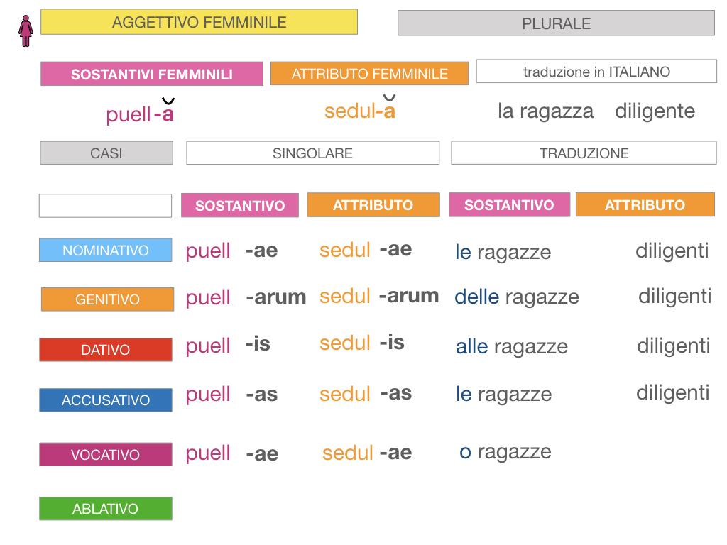 5. AGGETTIVO FEMMINILE PRIMA CLASSE_SIMULAZIONE.082