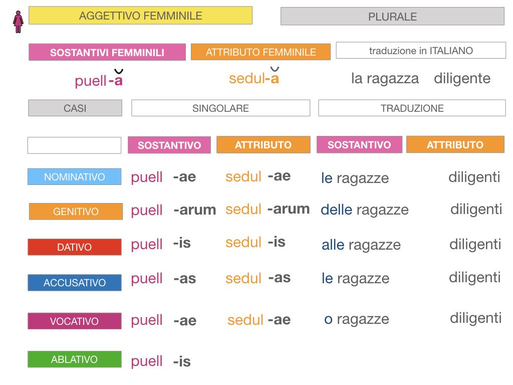 5. AGGETTIVO FEMMINILE PRIMA CLASSE_SIMULAZIONE.084