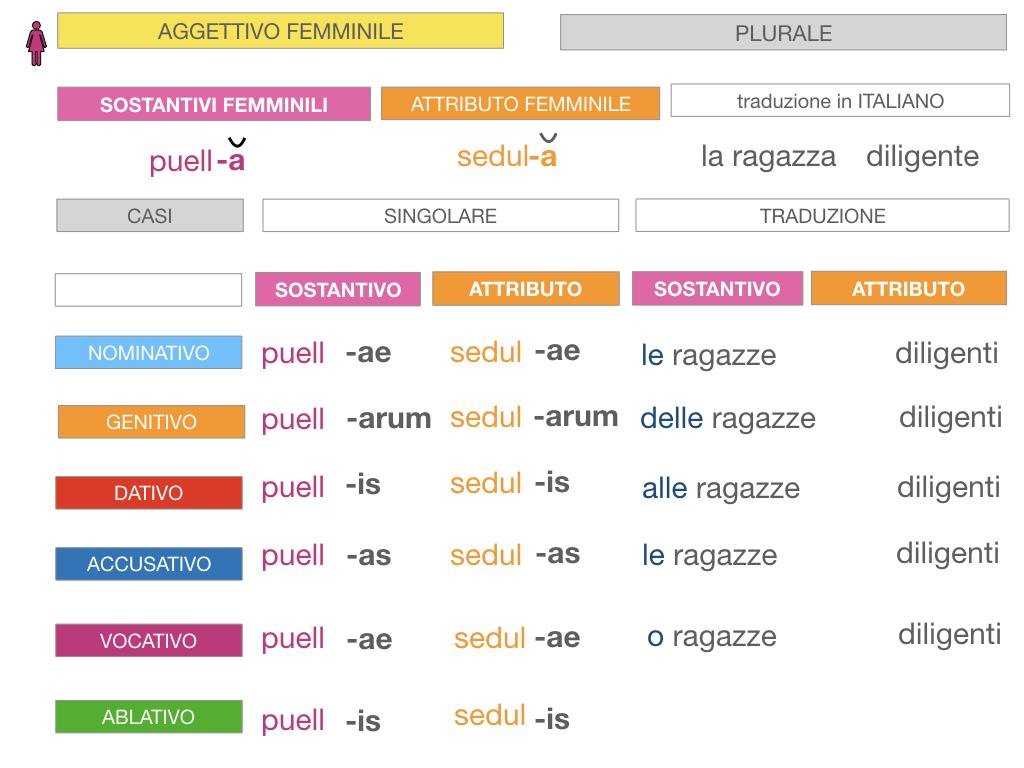 5. AGGETTIVO FEMMINILE PRIMA CLASSE_SIMULAZIONE.085