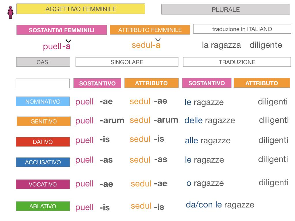 5. AGGETTIVO FEMMINILE PRIMA CLASSE_SIMULAZIONE.086