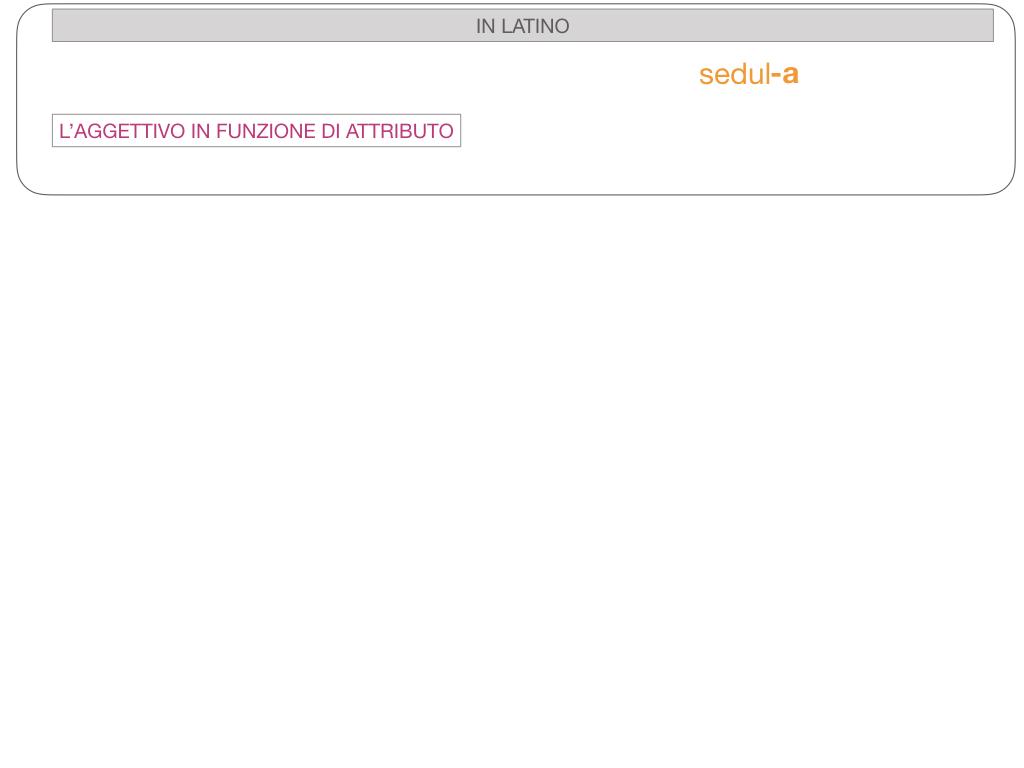 5. AGGETTIVO FEMMINILE PRIMA CLASSE_SIMULAZIONE.091