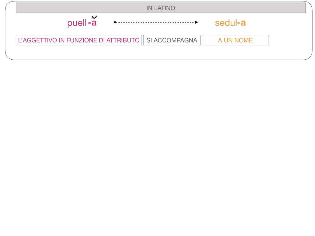 5. AGGETTIVO FEMMINILE PRIMA CLASSE_SIMULAZIONE.093