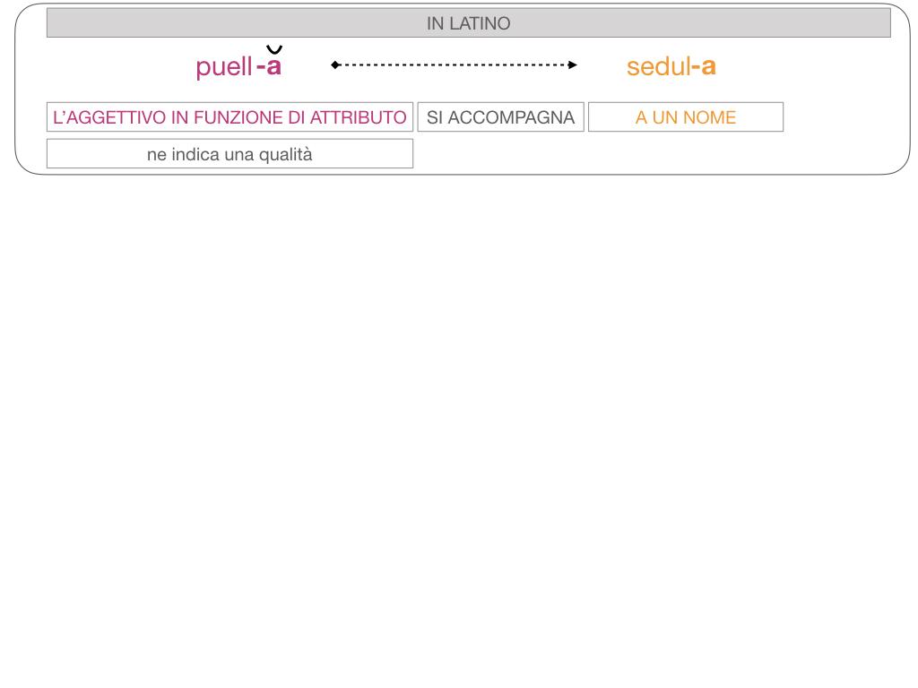 5. AGGETTIVO FEMMINILE PRIMA CLASSE_SIMULAZIONE.094