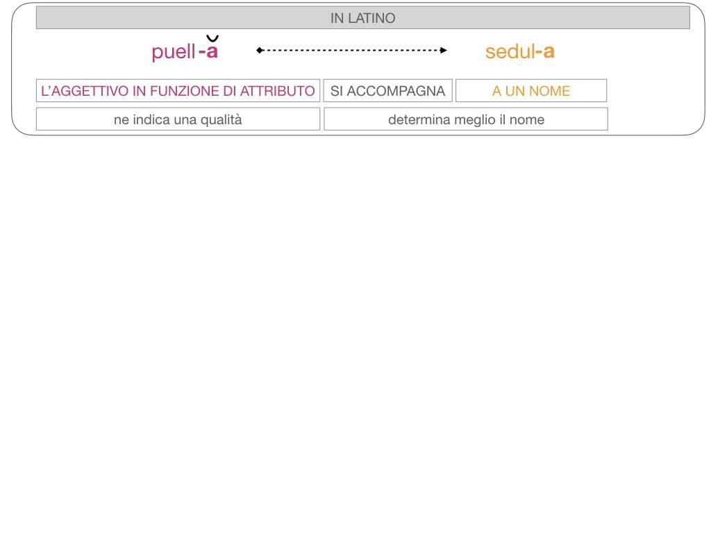 5. AGGETTIVO FEMMINILE PRIMA CLASSE_SIMULAZIONE.095