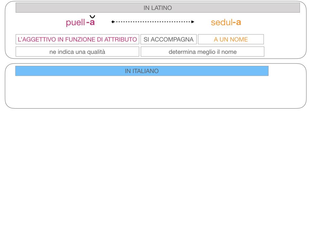 5. AGGETTIVO FEMMINILE PRIMA CLASSE_SIMULAZIONE.096