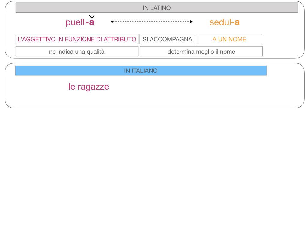 5. AGGETTIVO FEMMINILE PRIMA CLASSE_SIMULAZIONE.098
