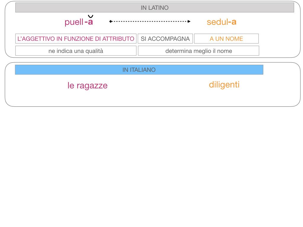 5. AGGETTIVO FEMMINILE PRIMA CLASSE_SIMULAZIONE.099