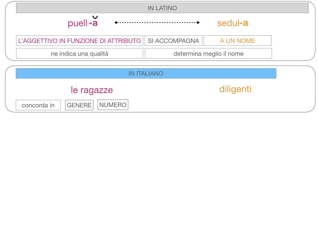 5. AGGETTIVO FEMMINILE PRIMA CLASSE_SIMULAZIONE.100