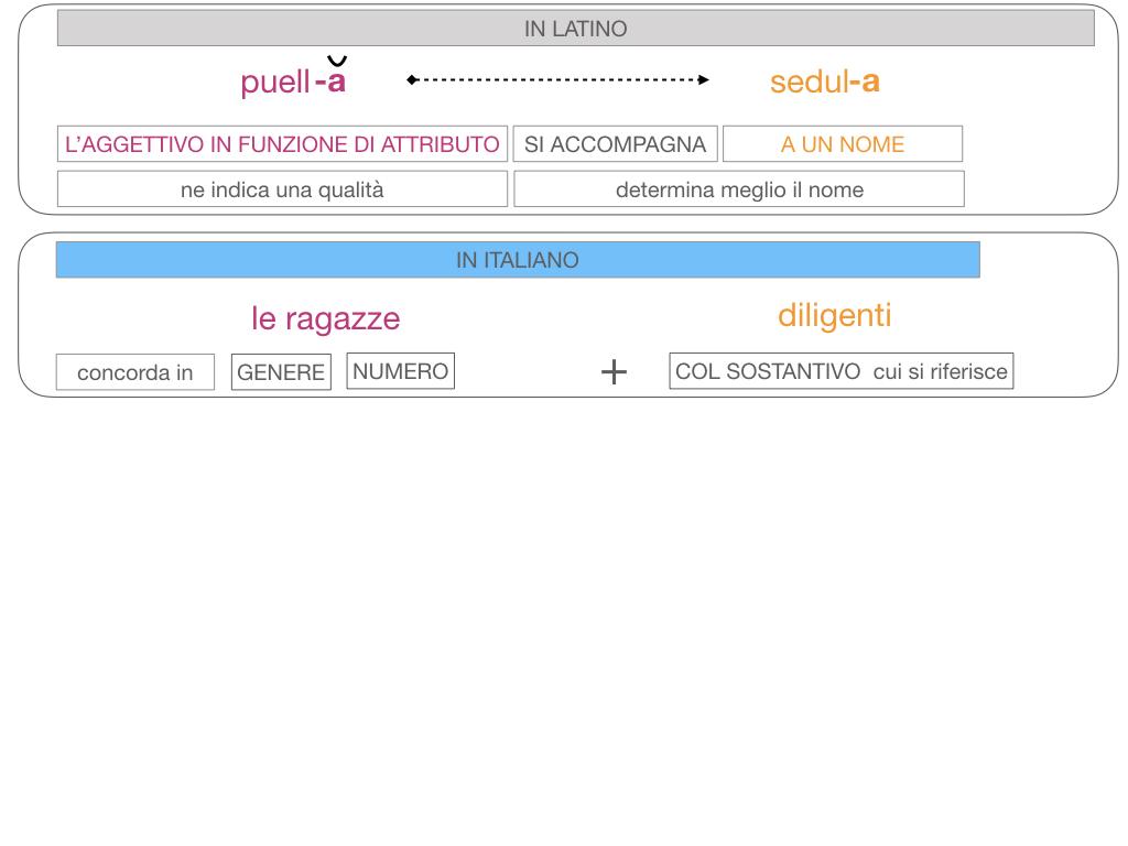 5. AGGETTIVO FEMMINILE PRIMA CLASSE_SIMULAZIONE.101
