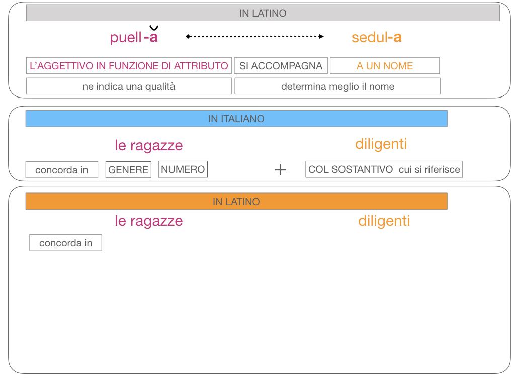 5. AGGETTIVO FEMMINILE PRIMA CLASSE_SIMULAZIONE.104