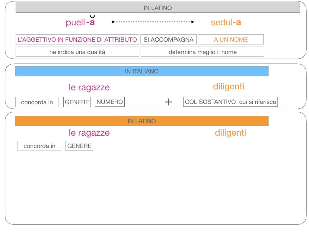 5. AGGETTIVO FEMMINILE PRIMA CLASSE_SIMULAZIONE.105