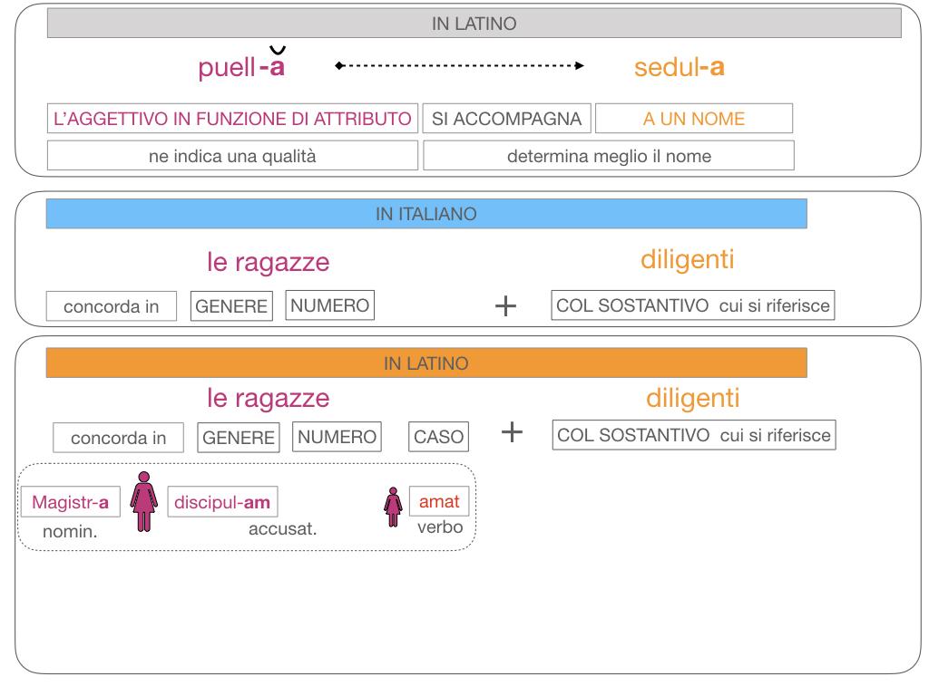 5. AGGETTIVO FEMMINILE PRIMA CLASSE_SIMULAZIONE.114