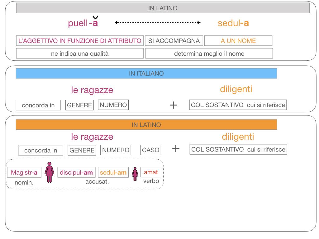5. AGGETTIVO FEMMINILE PRIMA CLASSE_SIMULAZIONE.115