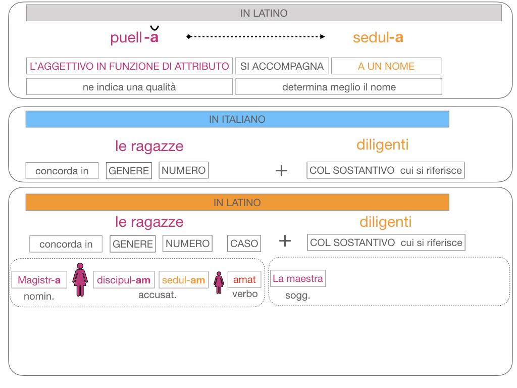 5. AGGETTIVO FEMMINILE PRIMA CLASSE_SIMULAZIONE.116